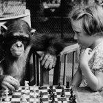 A che gioco giochiamo noi primati